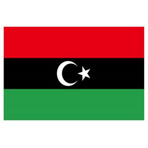 利比亚COI清关认证